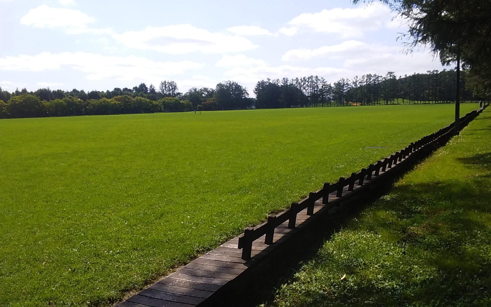 公園内にある芝生エリア、グリーンパーク